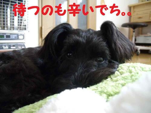 2010_0320_191511-DSCF3009.JPG