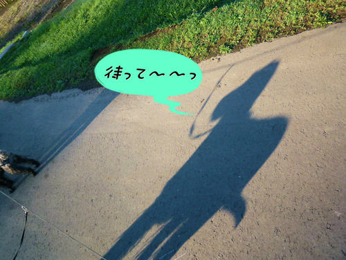2012_1008_070743-P1090446.jpg